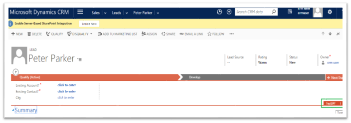 Business Process flow in CRM 2016