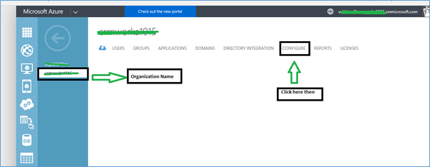 MS Dynamics CRM Customization