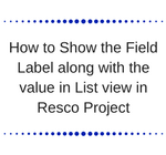 How to Show the Field Label along with the value in List view in Resco Project